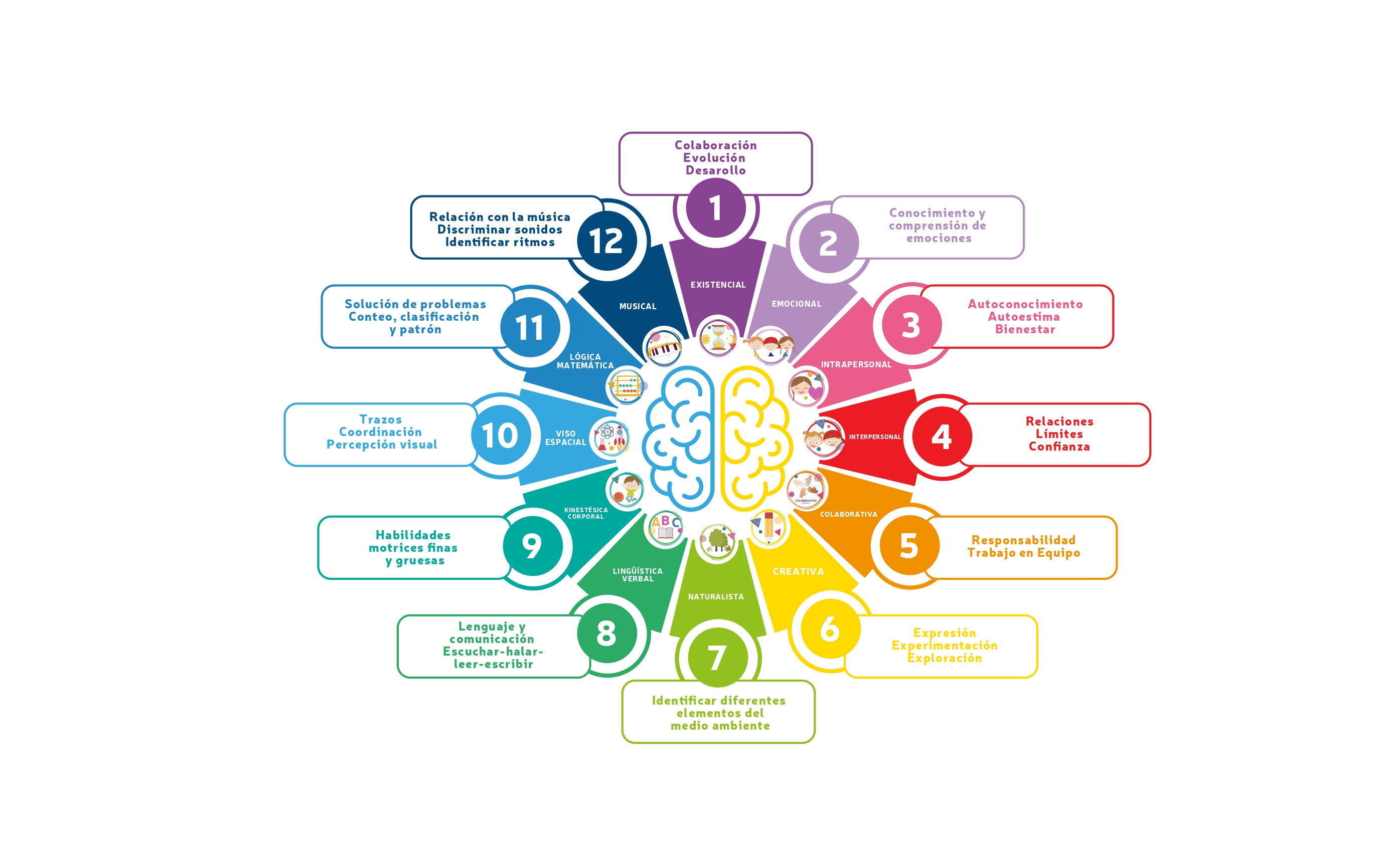 Infografia Inteligencias_page-0001